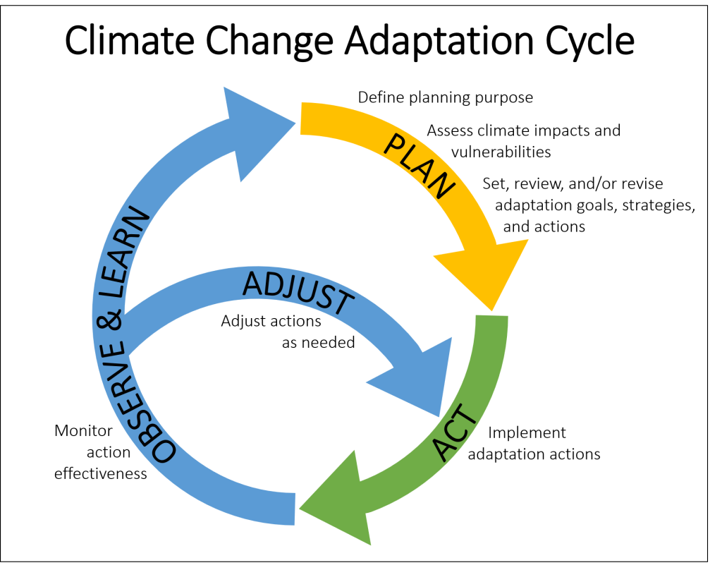 adaptation cycle