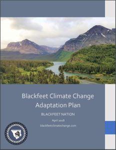 BCAP cover